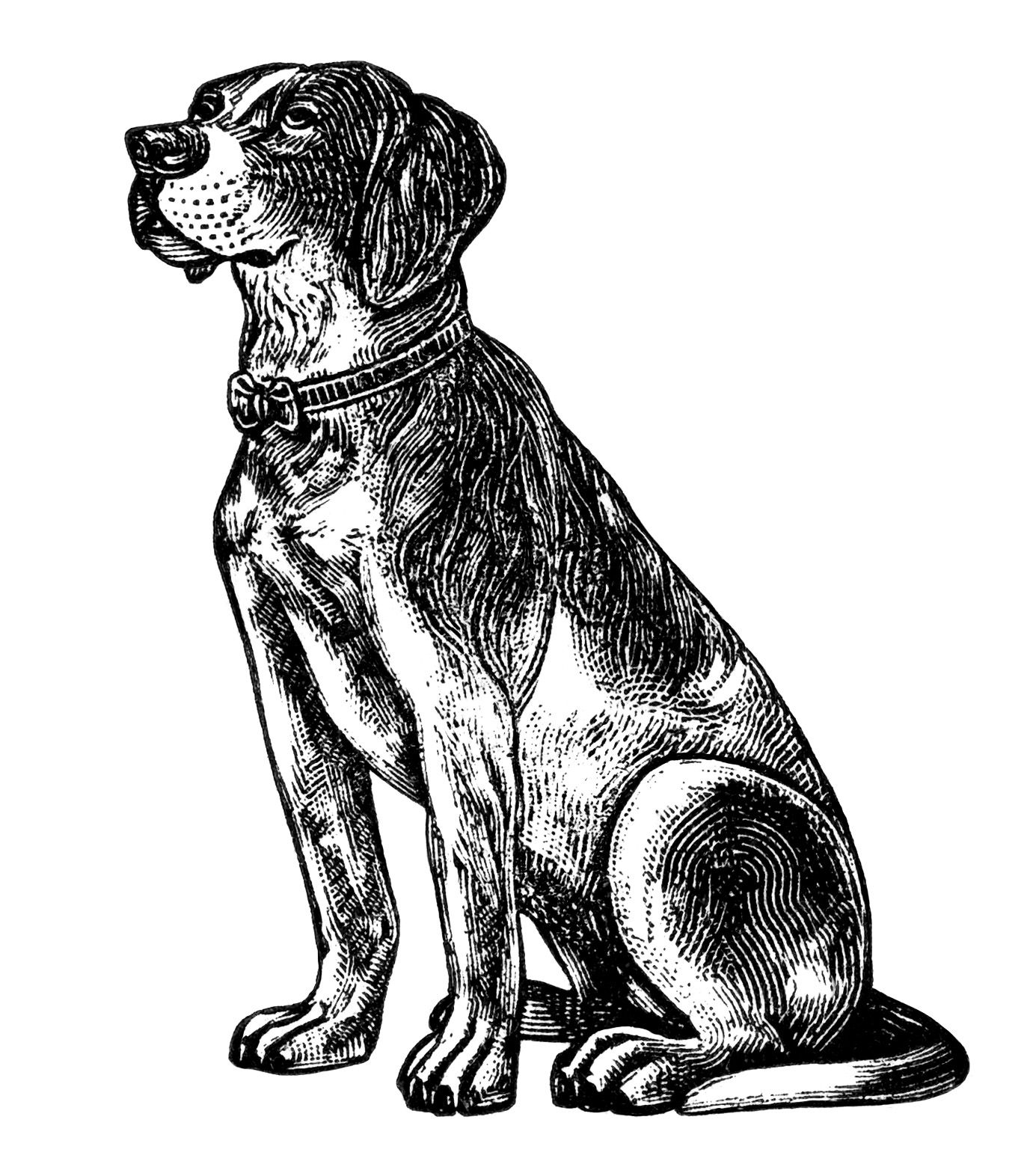 Free clipart of country side black and white vintage jpg transparent download free vintage dog clipart, black and white clip art, digital pet ... jpg transparent download
