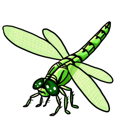 Free clipart of dragonflies royalty free 25 FREE Dragonfly Clip Art Drawings and Colorful Images royalty free