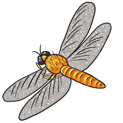 Free clipart of dragonflies vector download Free Dragonfly Cliparts, Download Free Clip Art, Free Clip Art on ... vector download