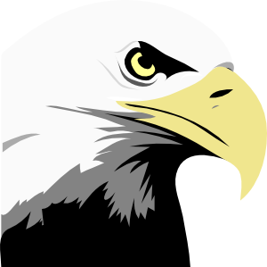Free clipart of eagles soaring. Eagle panda images