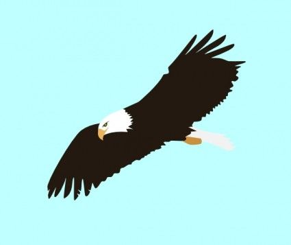 Eagle clip art places. Free clipart of eagles soaring