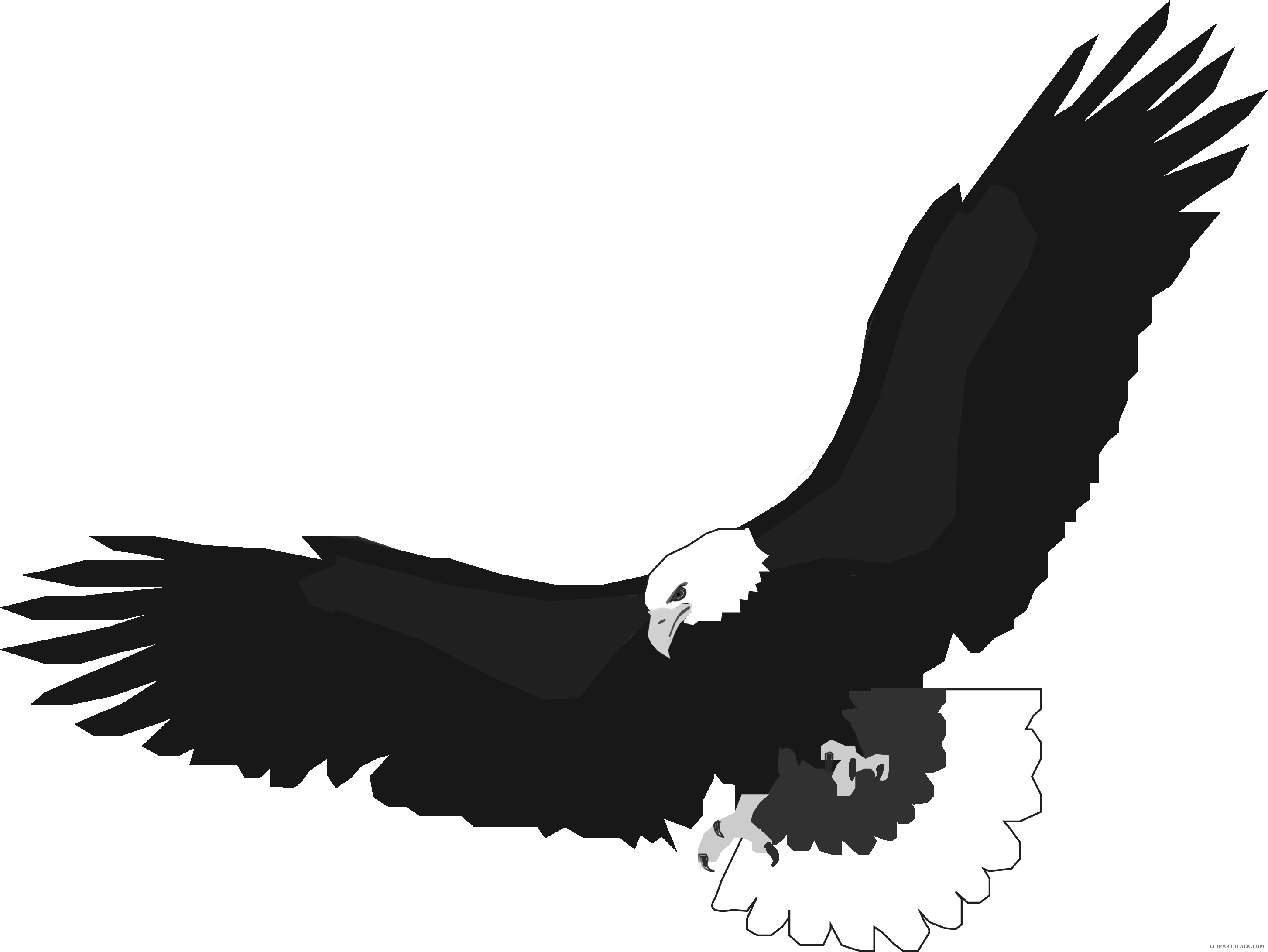 Eagle drawing download best. Free clipart of eagles soaring