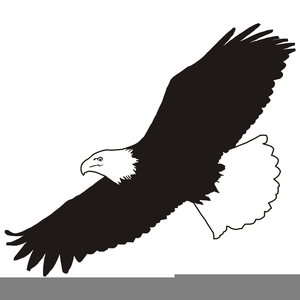 Soaring eagle clipart png royalty free library Free Clipart Eagle Soaring | Free Images at Clker.com - vector clip ... png royalty free library