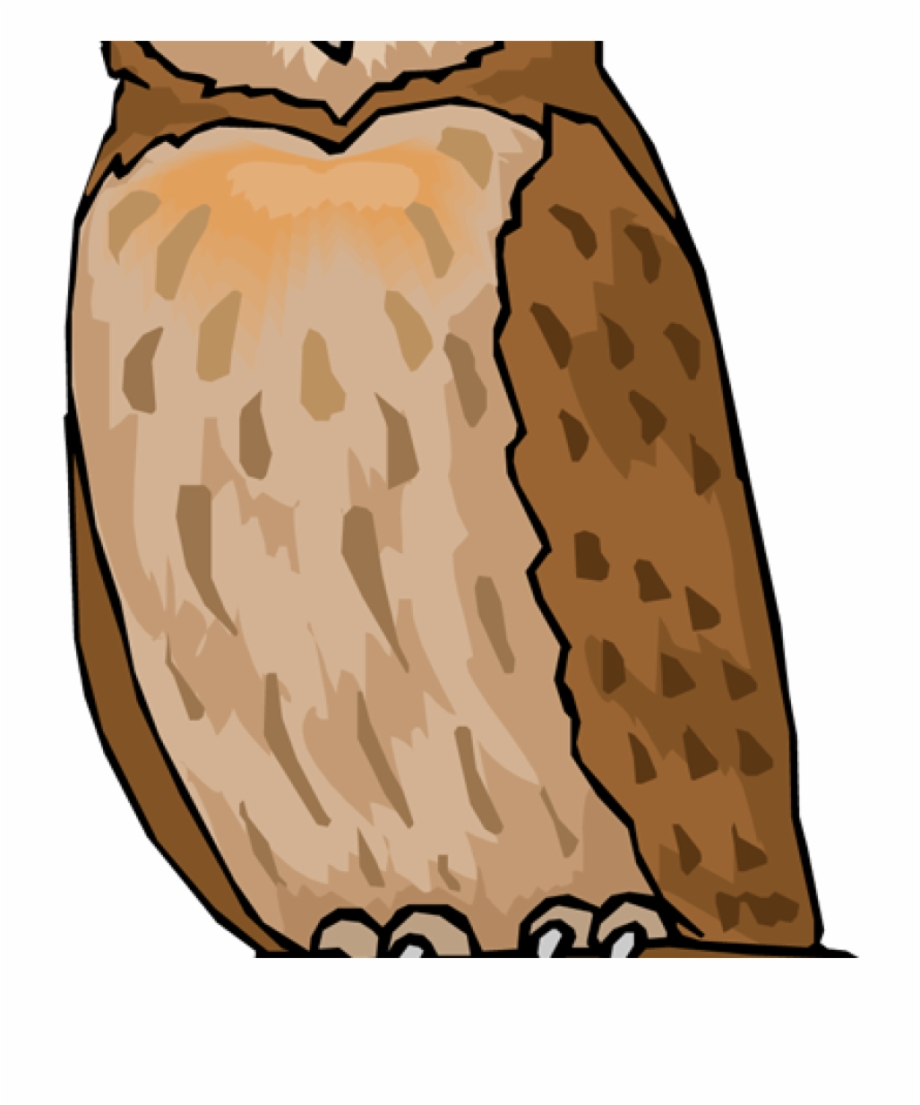 Free clipart of owls clipart black and white Vector Royalty Free Owl Clipart Free - Clip Art Owls Free PNG Images ... clipart black and white