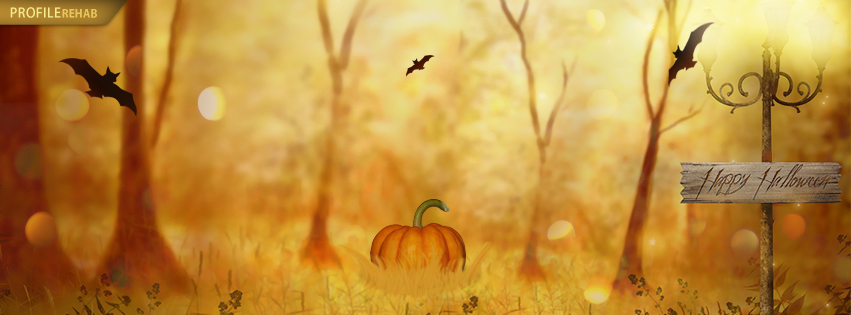 Free clipart of pumpkins for facebook cover photo picture 17 Best images about Facebook Covers~Falling for Autumn on ... picture