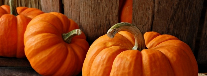 Free clipart of pumpkins for facebook cover photo clipart library 17 Best ideas about Fall Facebook Cover Photos on Pinterest ... clipart library