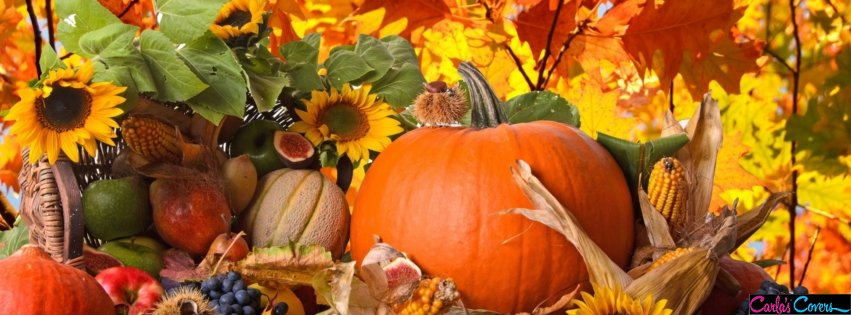 Free clipart of pumpkins for facebook cover photo png black and white library 17 Best ideas about Thanksgiving Facebook Covers on Pinterest ... png black and white library