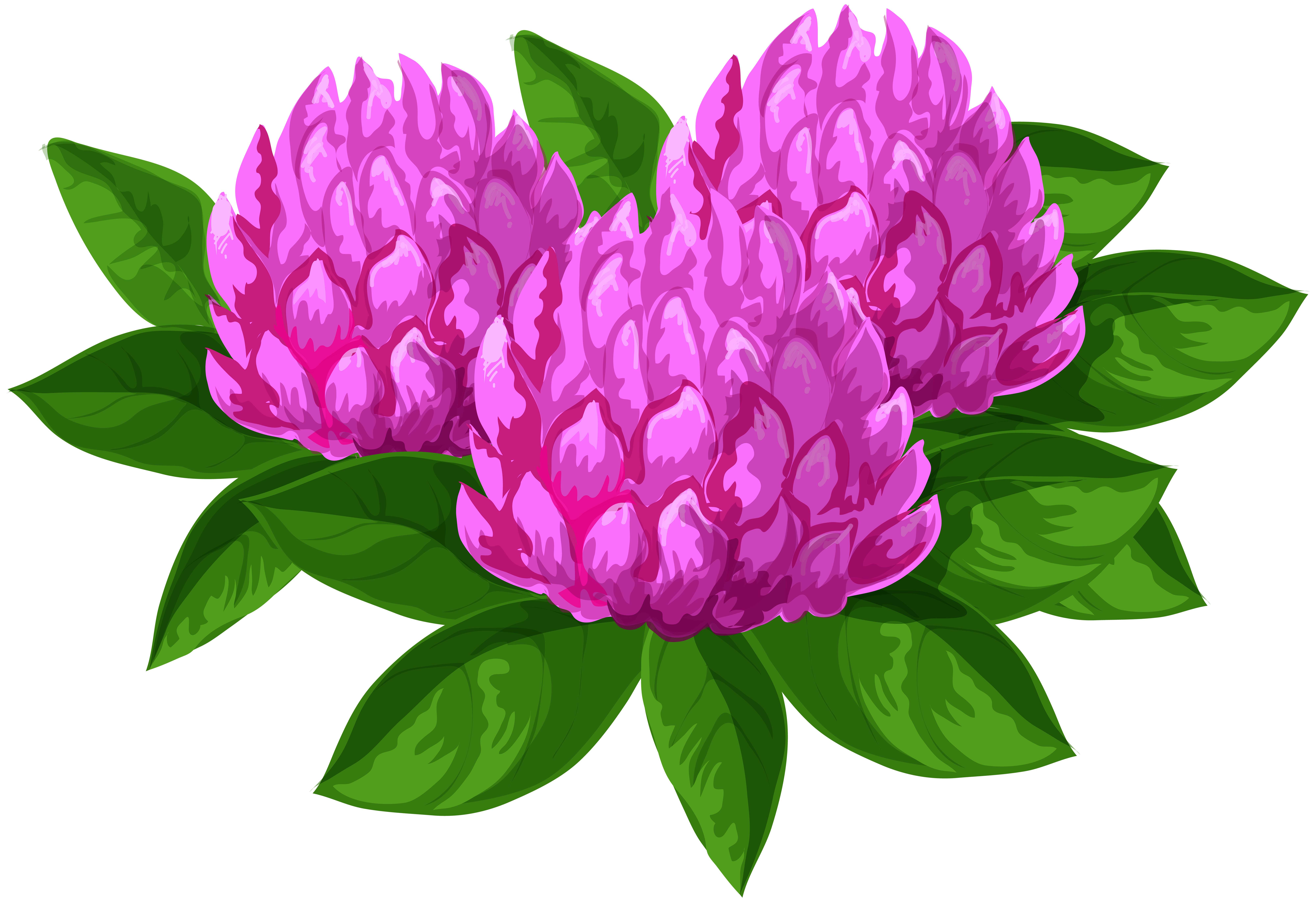 Free clipart of wild flowers. Png clip art image