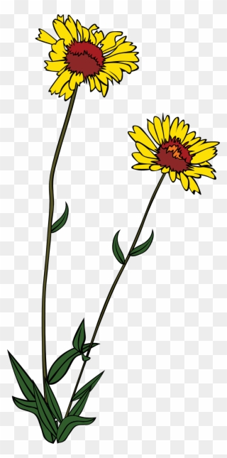 Free clipart of wild flowers. Png clip art download