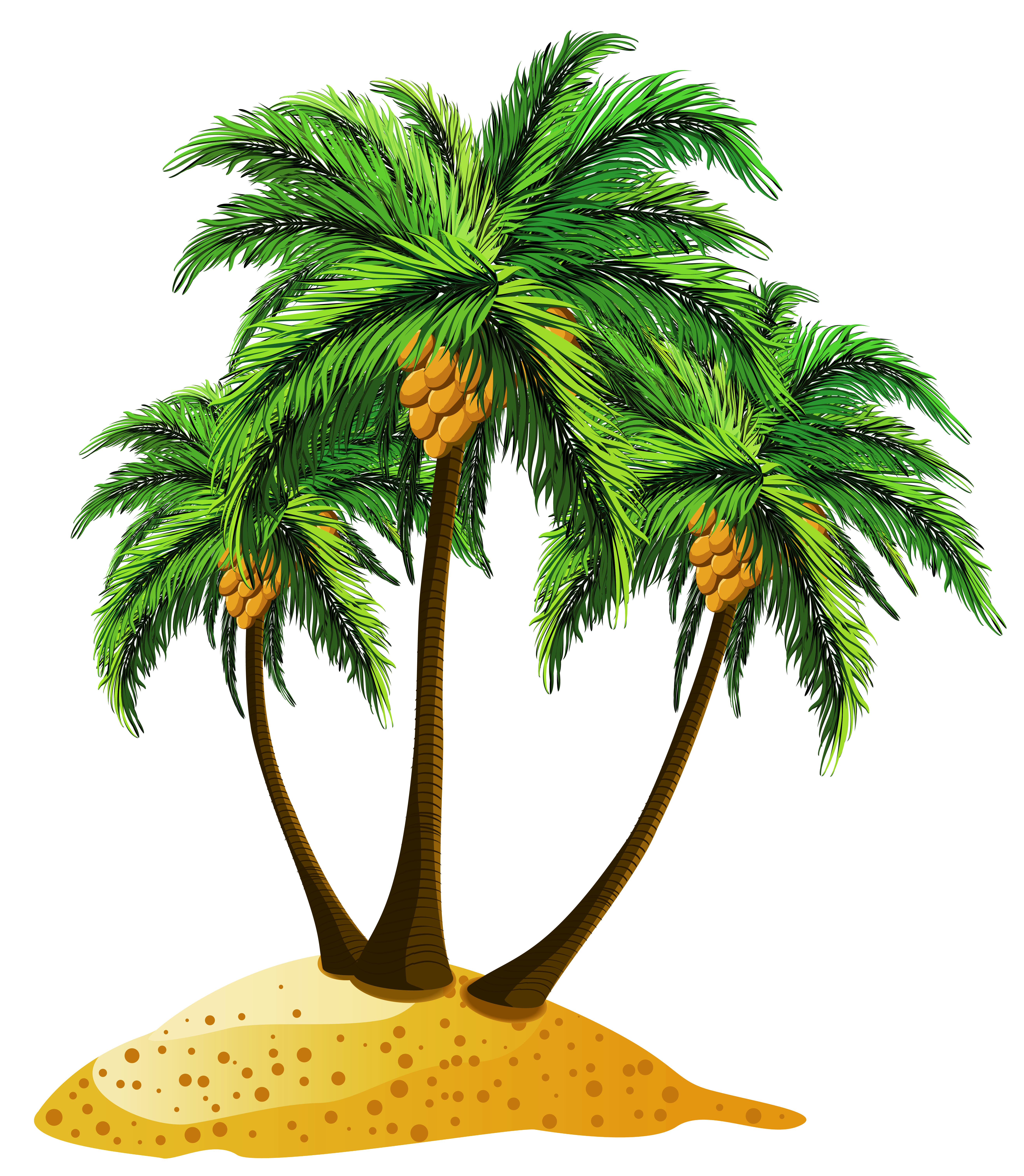 Free clipart palm tree beach banner free library Transparent Beach Palms Decor PNG Clipart   Gallery Yopriceville ... banner free library