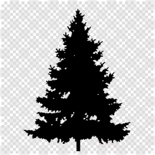 Free clipart pine tree silhouette black and white stock Pine Tree Silhouette PNG Images, Free Transparent Image Download - Pngix black and white stock