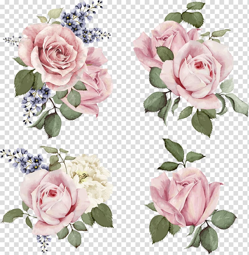 Free clipart pink rose hair peice w no background clip black and white Rose illustration Flower Illustration, Hand-painted roses, four pink ... clip black and white