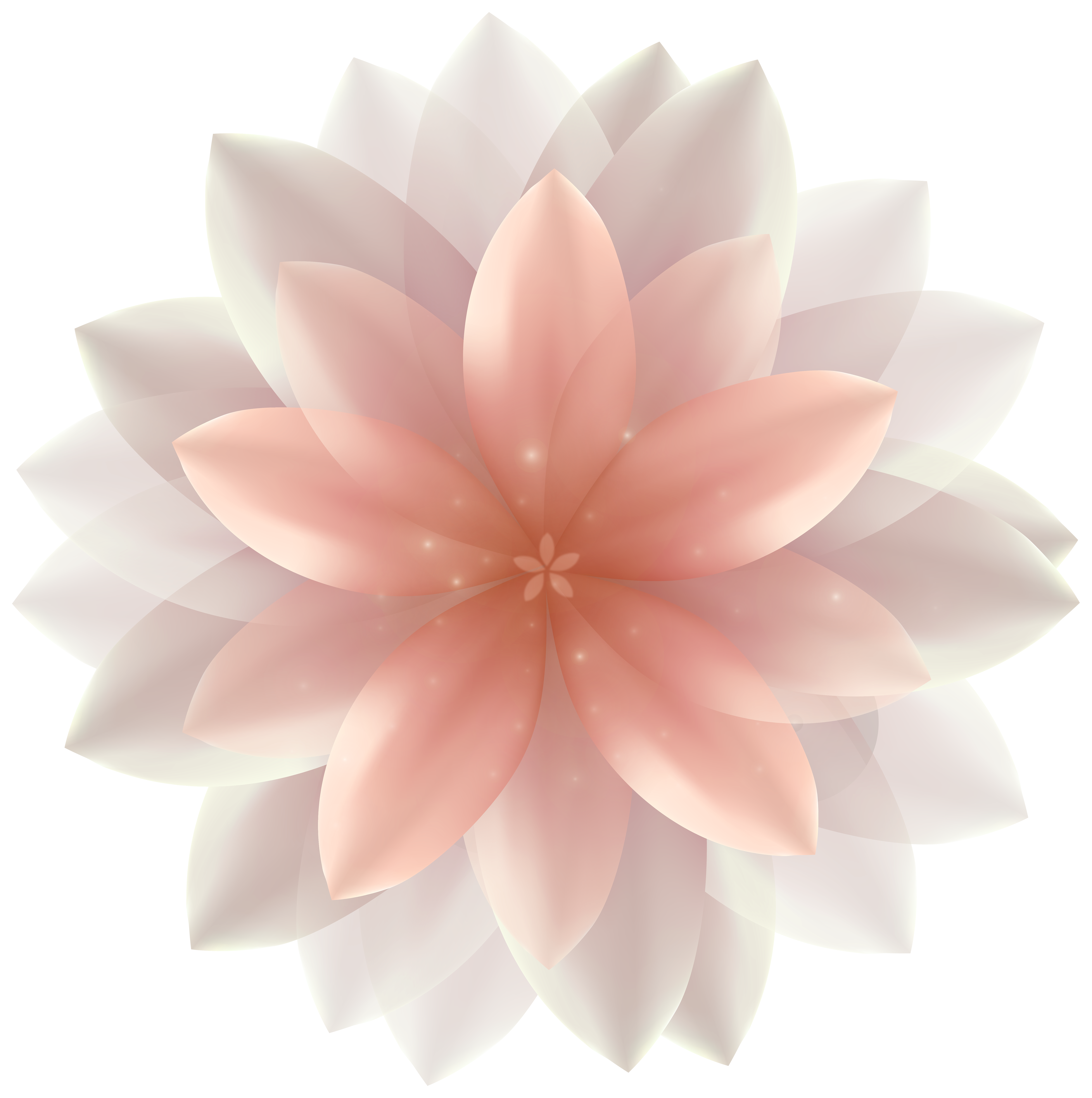 Free clipart pink rose hair peice w no background clip black and white download Pink flowers Dahlia Clip art - Transparent Flower Cliparts png ... clip black and white download