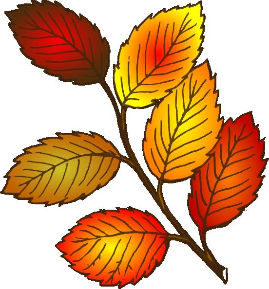 Free clipart pumpkin vine image royalty free download Pumpkin Leaf Pictures | Free download best Pumpkin Leaf Pictures on ... image royalty free download