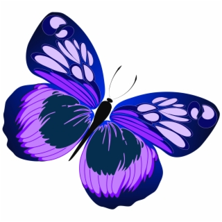 Free clipart purple and yellow butterfly png clip free Free Butterfly PNG Images & Cliparts - Pngtube clip free
