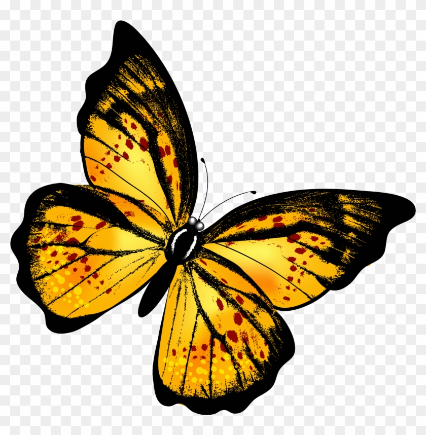 Free clipart purple and yellow butterfly png banner transparent library Yellow Butterfly Png, Transparent Png - 1728x1724(#531394) - PngFind banner transparent library