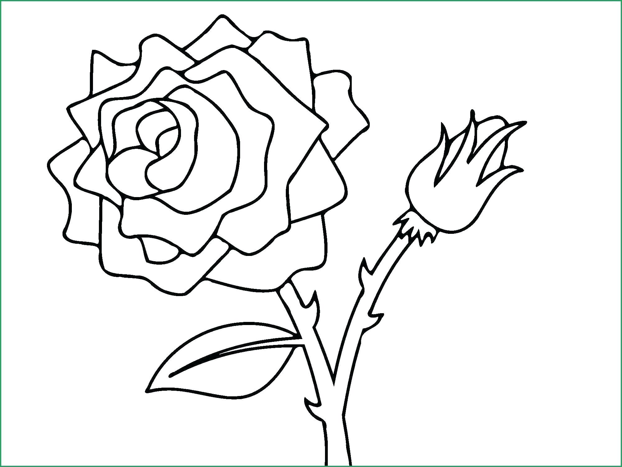 Free clipart rose with thornes coloring page clipart royalty free stock roses coloring pages – bluedotsheet.co clipart royalty free stock