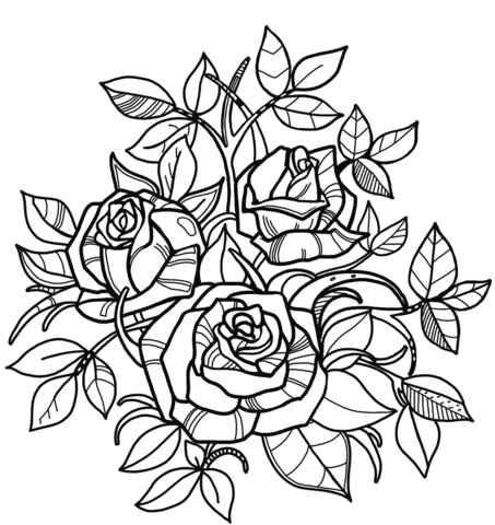 Free clipart rose with thornes coloring page graphic black and white library Roses coloring page | Free Printable Coloring Pages graphic black and white library