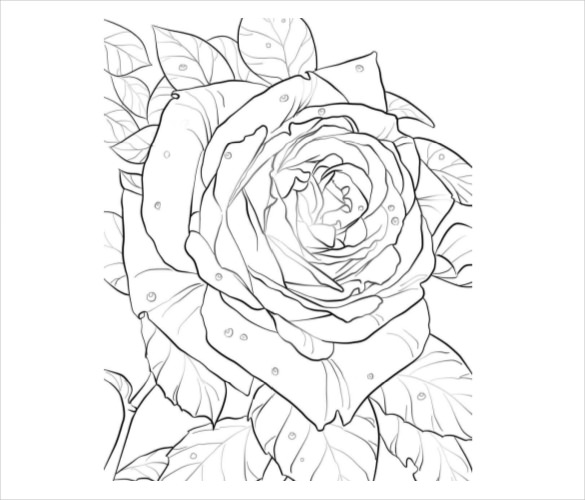 Free clipart rose with thornes coloring page clip freeuse library 21+ Flower Coloring Pages -PSD, AI, Vector EPS | Free & Premium ... clip freeuse library