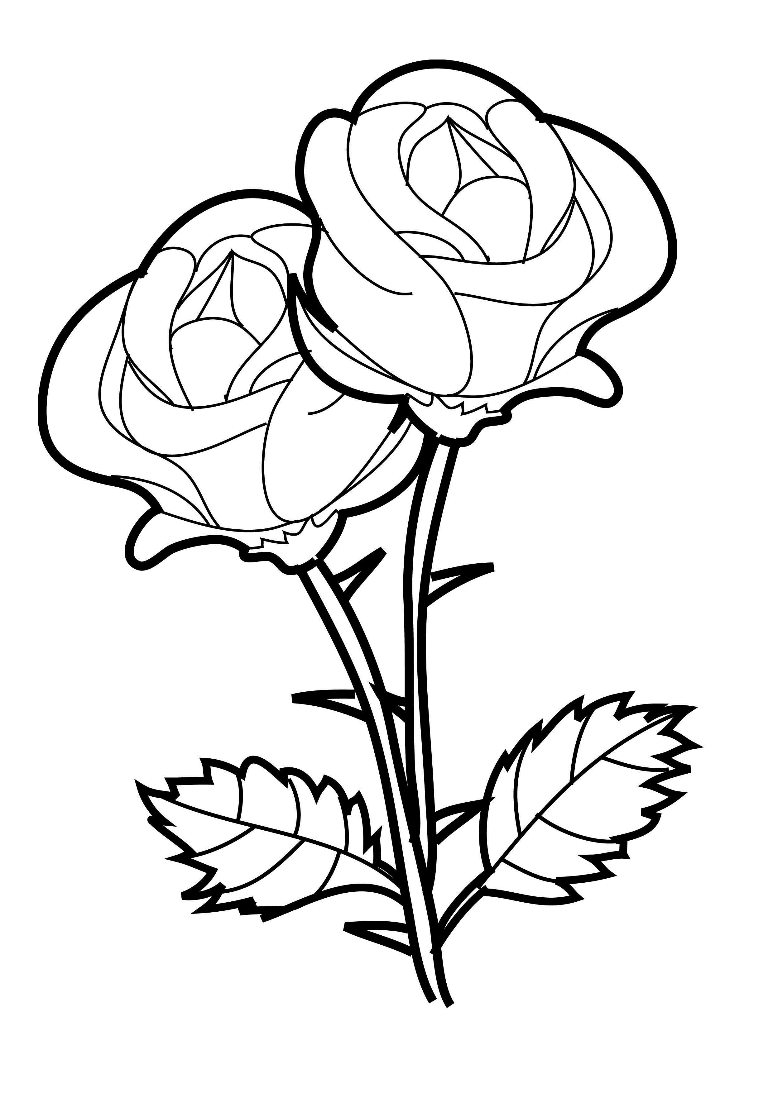 Free clipart rose with thornes coloring page vector free Flower Coloring Pages | Crosses | Rose coloring pages, Printable ... vector free