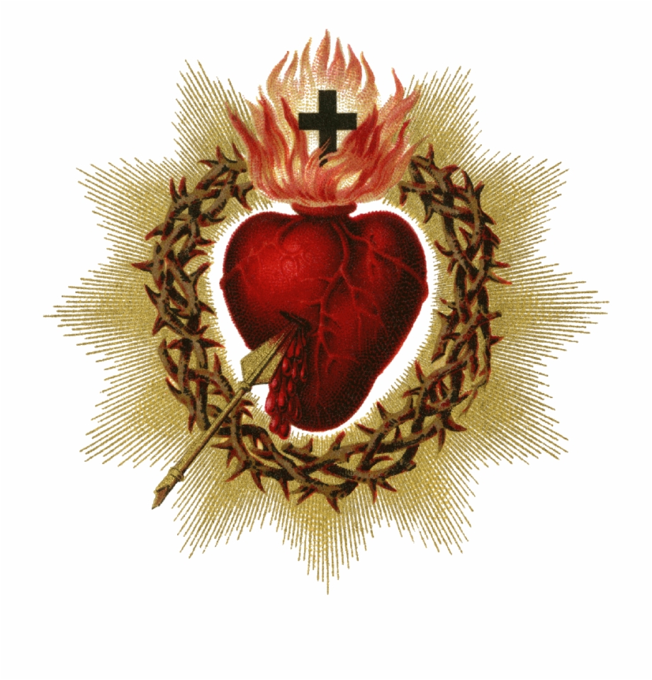 Free clipart sacred heart of jesus clipart library library Sacred Heart Png Picture - Jesus Heart Free PNG Images & Clipart ... clipart library library
