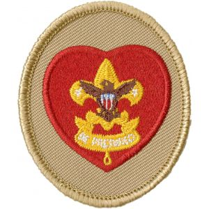 Free clipart scout tenderfoot second class first class banner stock BSA® Insignia by Rank   Boy Scouts of America® banner stock