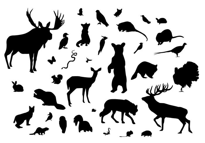 Free clipart silhouette animals graphic royalty free Forest Animal Silhouettes - Download Free Vectors, Clipart Graphics ... graphic royalty free
