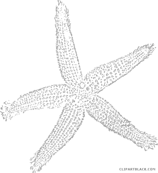 Free clipart star fish clip transparent library Starfish - Page 5 of 7 - ClipartBlack.com clip transparent library