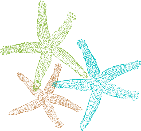 Star fish clipart png clip free library Starfish Prints Clip Art at Clker.com - vector clip art online ... clip free library