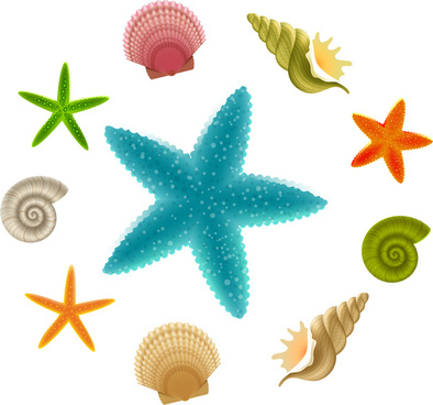 Starfish graphics clipart clipart transparent download Free clipart images starfish free vector download (3,220 Free vector ... clipart transparent download