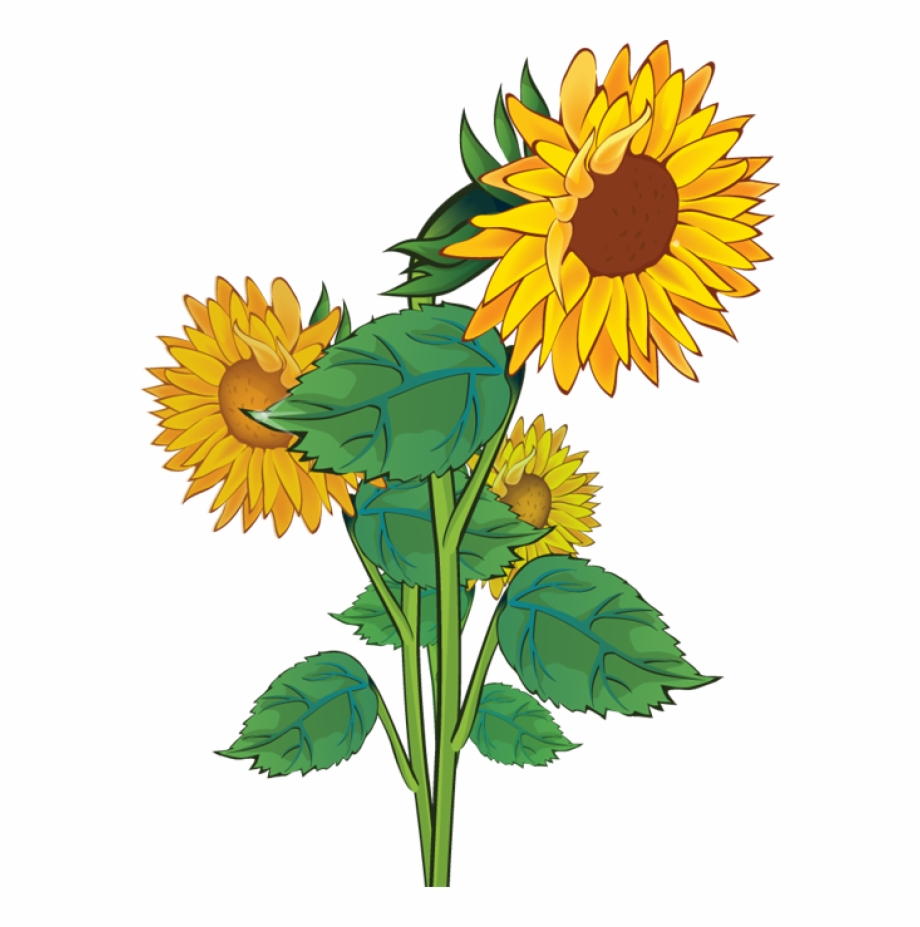 Free clipart sunflowers flowers picture transparent library Free Clip Art - Sunflower Clipart, Transparent Png Download For Free ... picture transparent library