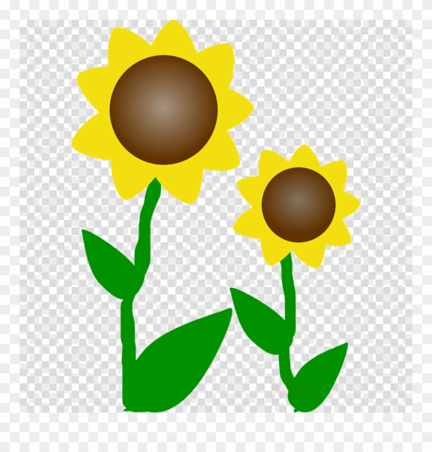 Free clipart sunflowers flowers graphic freeuse stock Free Sunflower Clipart Clip Art - Clipart Sunflowers - Png Download ... graphic freeuse stock