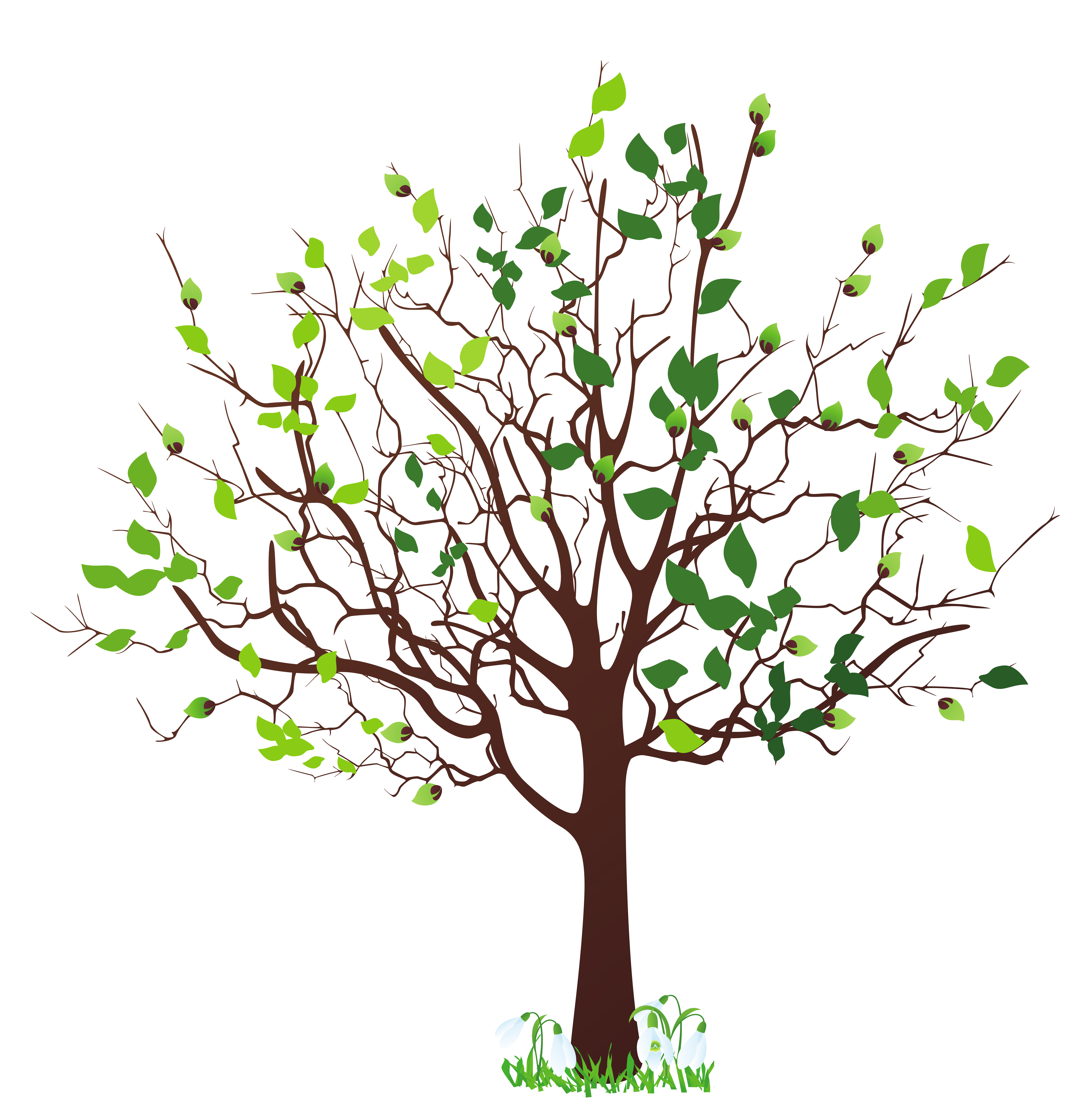 Free clipart trees images clip art freeuse Free Free Tree Images, Download Free Clip Art, Free Clip Art on ... clip art freeuse