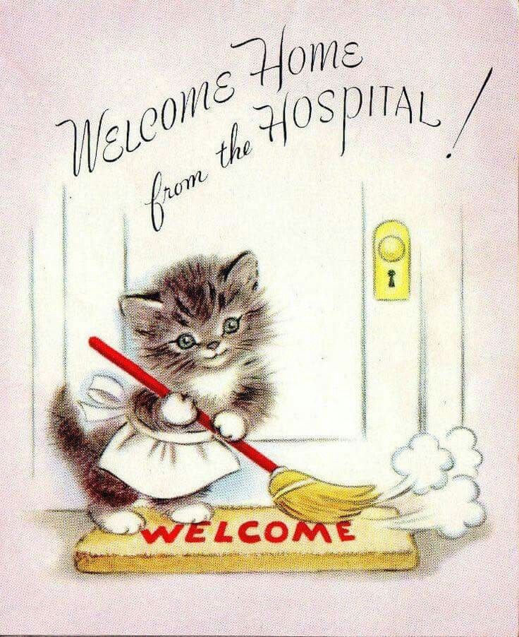 Vintage home hospital card. Free clipart welcome back mom from the cats