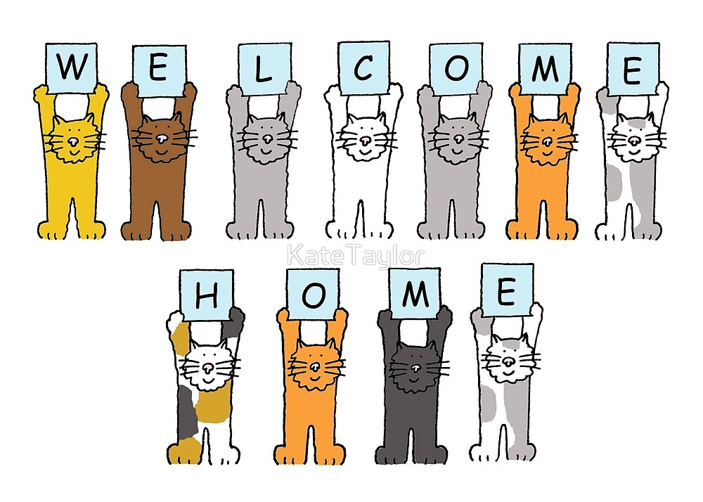 Home cartoon by katetaylor. Free clipart welcome back mom from the cats