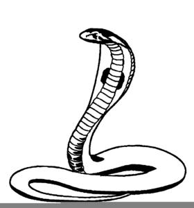 Free cobra clipart clip freeuse Clipart Cobra | Free Images at Clker.com - vector clip art online ... clip freeuse