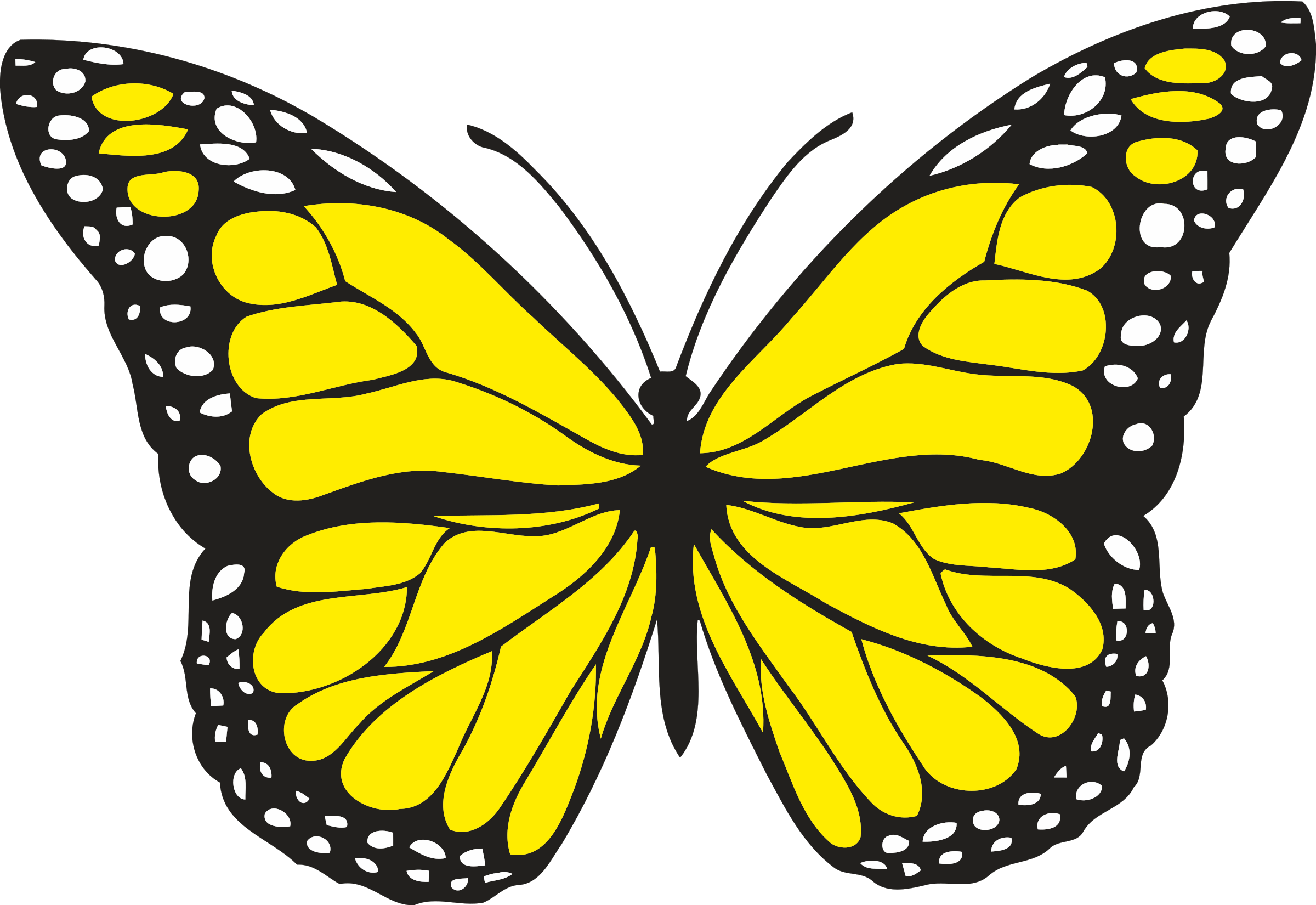 Free color book clipart butterfly image black and white library Revealing Images Of Butterfly Pictures Butterf #15599 | Maries ... image black and white library