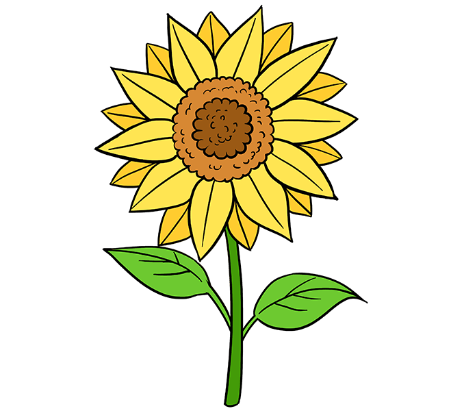 Free color book clipart sunflower vector transparent How to Draw a Sunflower | Pinterest | Flower drawing tutorials ... vector transparent