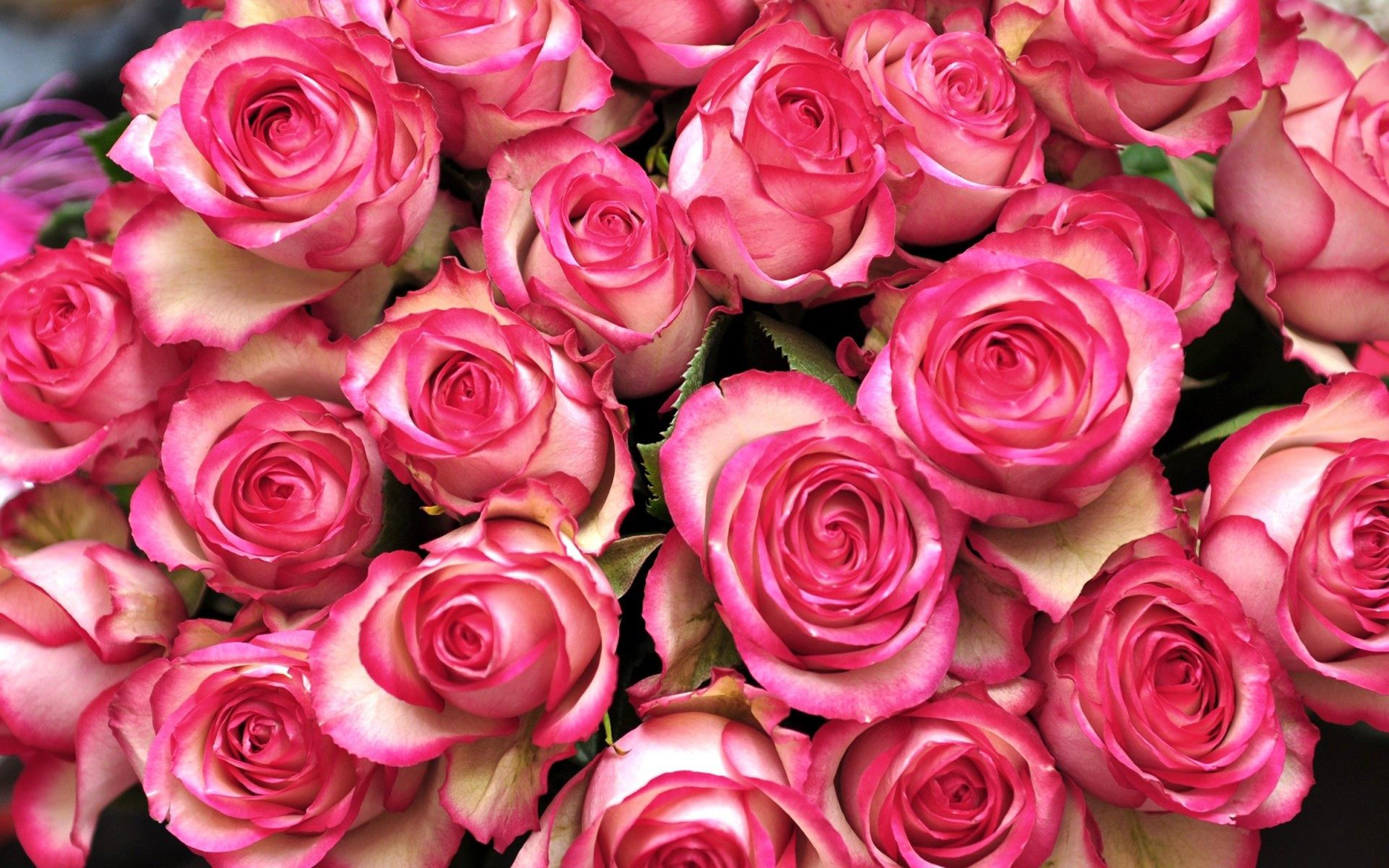 Free download flower bouquets png transparent Pink White Flowers Bouquet Desktop Hd Wallpaper Free Download ... png transparent