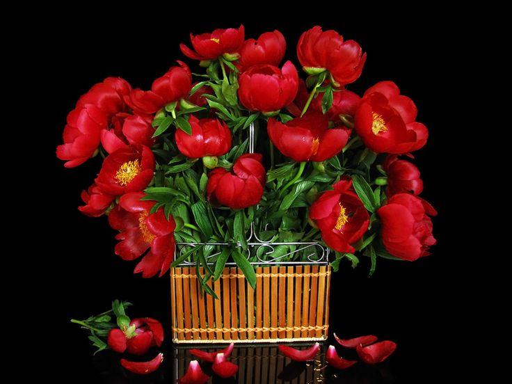 Free download flower bouquets banner download Flower Bouquet Images Free Download - Flower Images banner download