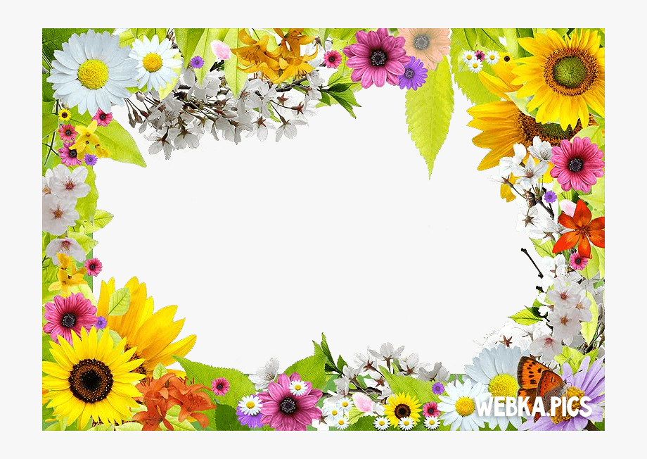 Free download frame cliparts. Flower frames clipart picture