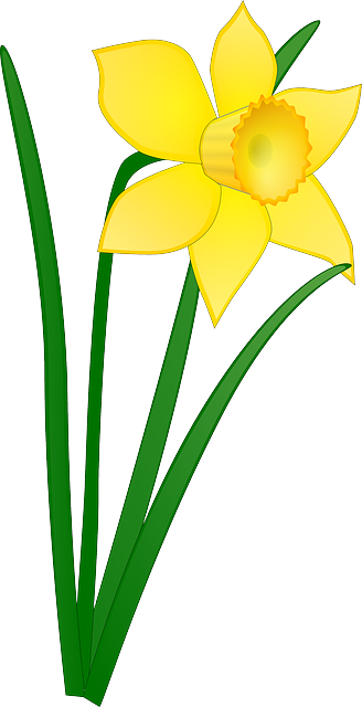 Free easter flower clipart clipart freeuse Free Image on Pixabay - Daffodil, Yellow, Flower, Floral | Clip Art ... clipart freeuse