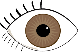 Free eyeball clipart images. Brown eyes gclipart com