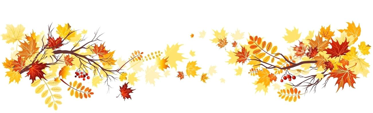 Free fall leaves clipart border png black and white fall-leaves-clip-art-border-autumn-leaves-corner-border-free-fall ... png black and white