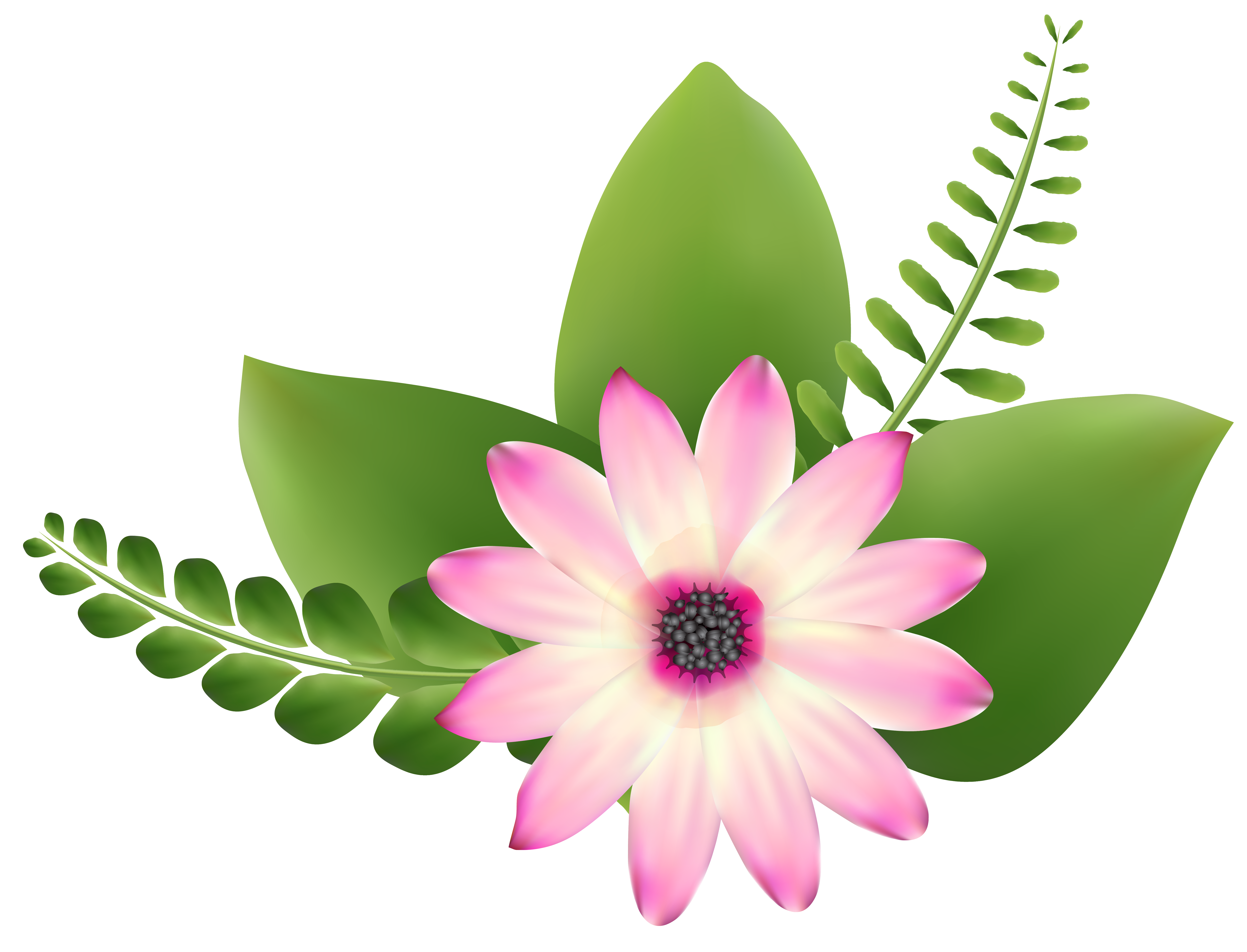 Free flower artwork jpg transparent Pink Flower Clip-Art PNG Image | Gallery Yopriceville - High ... jpg transparent
