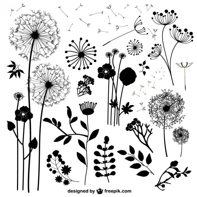 Free flower silhouette clipart. Wild flowers silhouettes vector