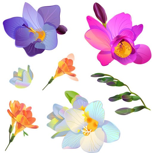Free flowers graphics picture library download Photo Flowers Graphic | Free Download Clip Art | Free Clip Art ... picture library download