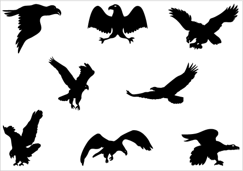 Download clip art on. Free flying eagle clipart