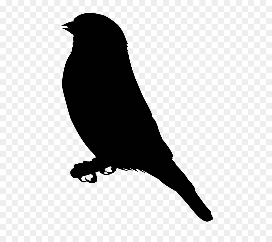 Free flying goldfinch bird clipart clip art black and white stock Bird Silhouette png download - 584*800 - Free Transparent Finch png ... clip art black and white stock