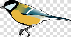 Free flying goldfinch bird clipart png transparent download European Goldfinch transparent background PNG cliparts free download ... png transparent download
